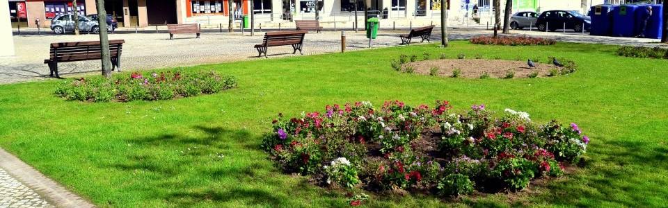 Requalificação dos espaços verdes