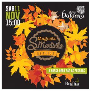 S. Martinho – 11 de novembro